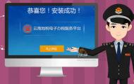 电子税务平台-flash流程动画
