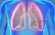 人体器官-肺部三维医学动画