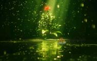 花朵绽放-高清角色影视动画